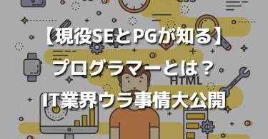 programing-se-pg