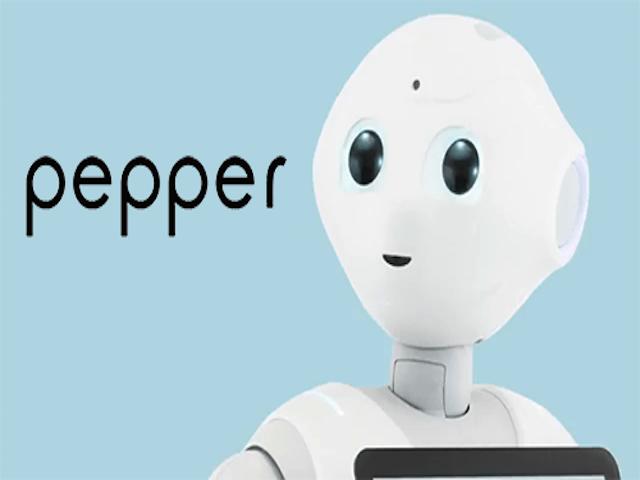 20150220-pepper-0