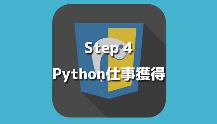 crruculums_python_4